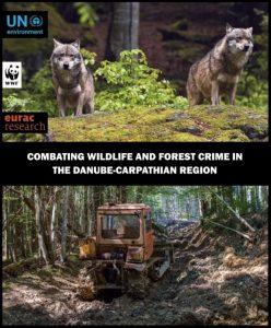 cover 56 248x300 - Чому важливо боротися із незаконною вирубкою та браконьєрством?