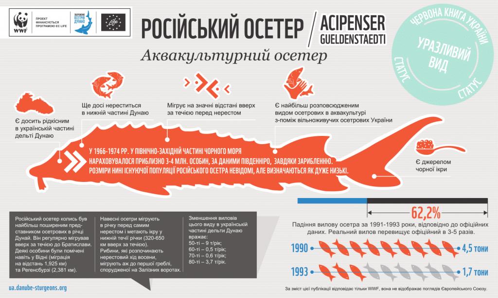 rusoseter infogr 1024x614 - WWF в Україні візьме участь у підготовці нової редакції Червоної книги