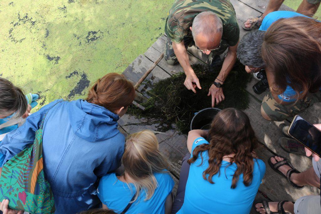 """IMG 4644 1024x683 - Друга """"Осетрова варта"""": як волонтери допомагали рятувати осетрів Дунаю"""