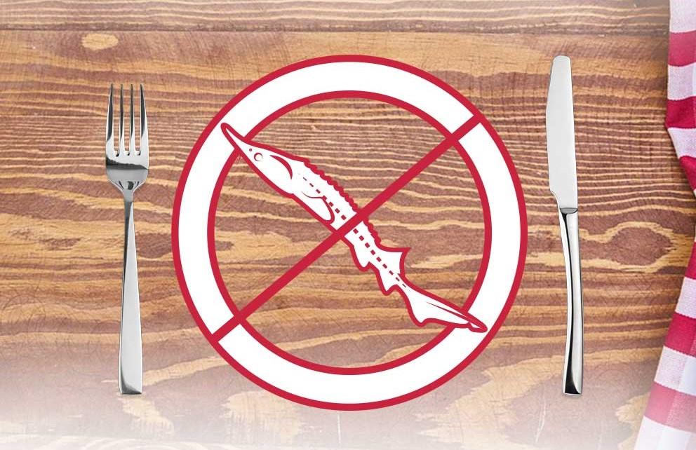 У Сербії офіційно заборонили вилов стерляді