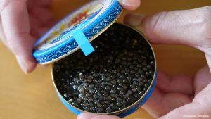 Beluga caviar©Hannes Greber WWF Austria 1 300x169 - Браконьєрство та незаконна торгівля осетрами становлять основну небезпеку для видів, що знаходяться під загрозою зникнення в Європі, попереджає новий звіт
